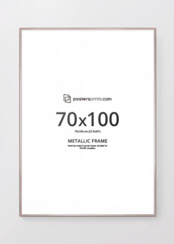 BILDERRAHMEN CHAMPAGNER 70x100