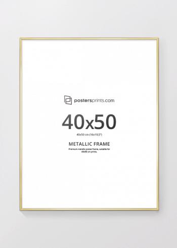BILDERRAHMEN GOLD 40x50