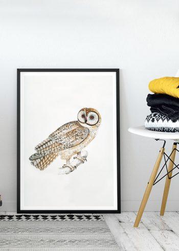 VINTAGE WHITE OWL POSTER