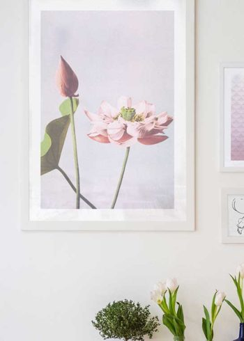 COLORIZED VINTAGE FLOWERS NO. 1 POSTER
